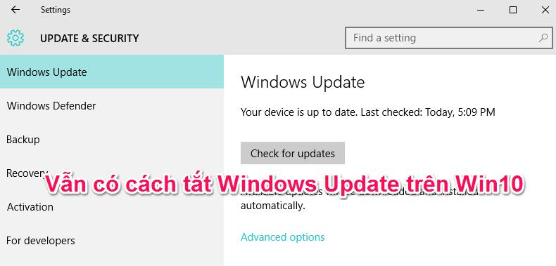 Hướng dẫn cách tắt Windows 10 Update vĩnh viễn